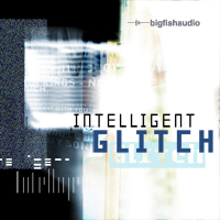 Intelligent Glitch: Glitch style IDM grooves that push the boundaries of this musical genre